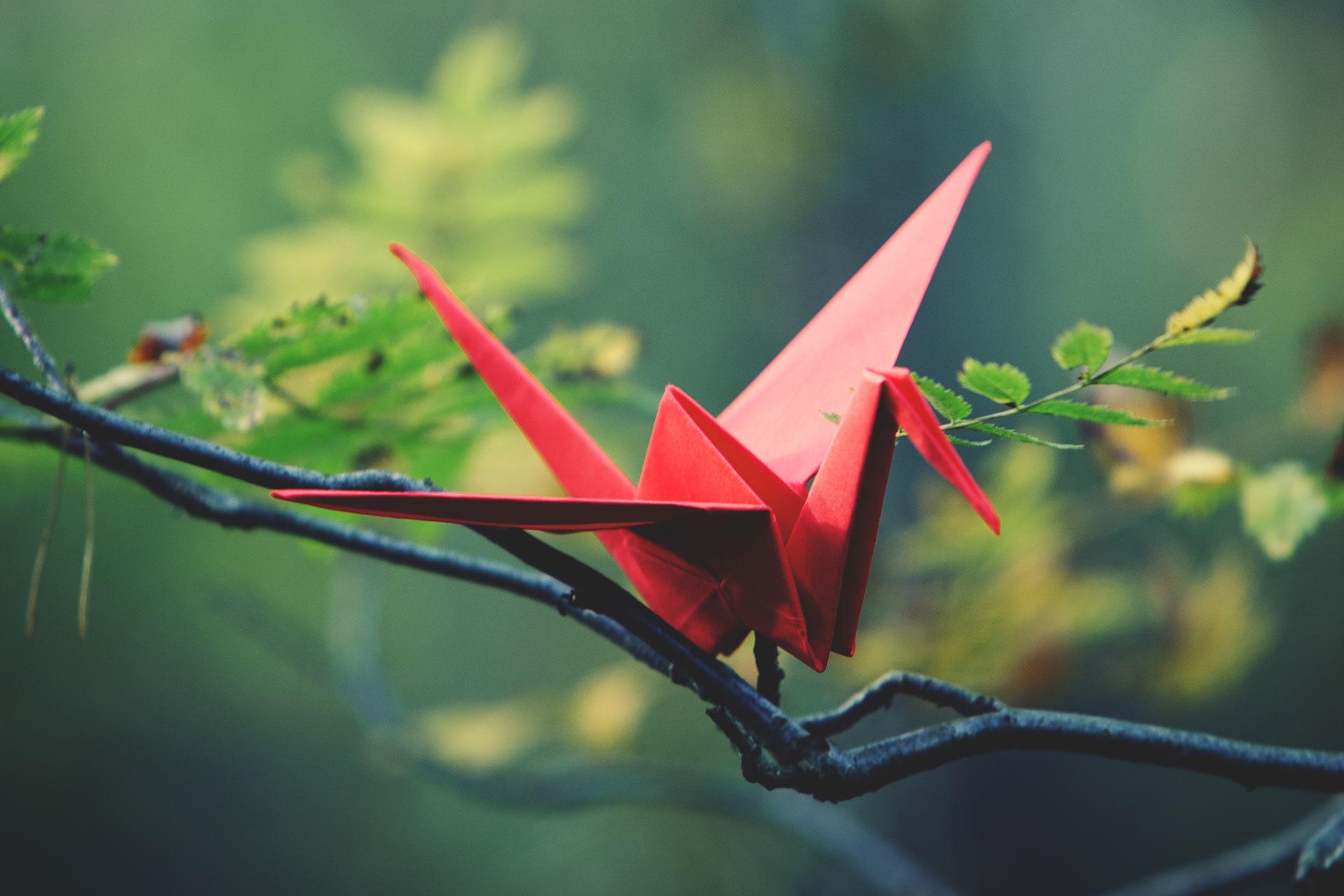 Mit Origami zum Teegenuss – Deutscher Verpackungspreis 2019 ... | 1280x1920